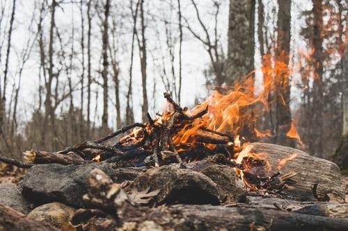 Feuer-im-Wald-machen
