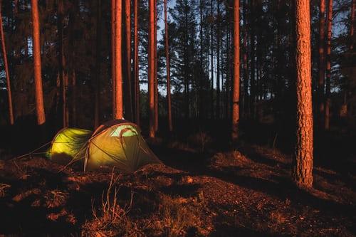 Übernachten-im-Wald
