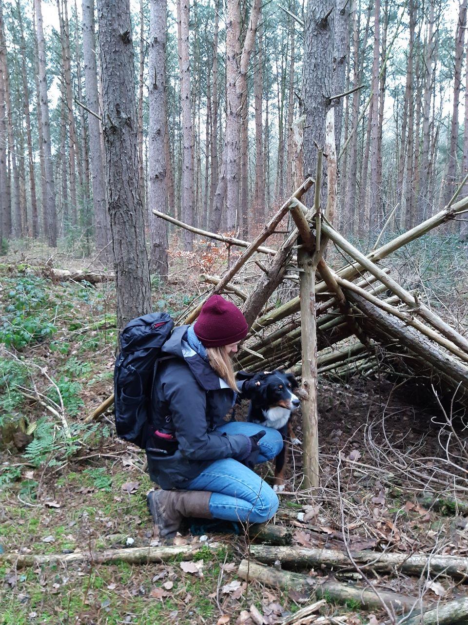 Holzunterstand im Wald