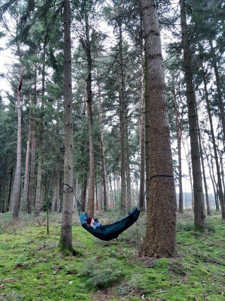 Schlafen im Wald